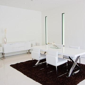 Pangea Home Modern