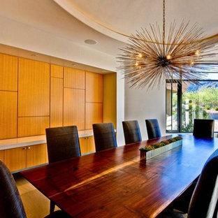 Esempio di una grande sala da pranzo minimalista chiusa con pareti bianche e pavimento in compensato
