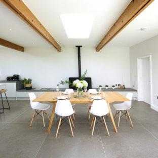 Ispirazione per una sala da pranzo aperta verso la cucina minimal di medie dimensioni con pareti bianche, pavimento con piastrelle in ceramica, stufa a legna, cornice del camino in cemento e pavimento grigio