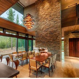 サクラメントの広いコンテンポラリースタイルのおしゃれなLDK (両方向型暖炉、石材の暖炉まわり) の写真