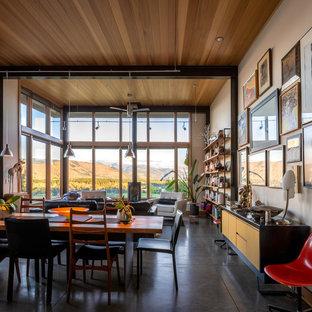 シアトルの中サイズのエクレクティックスタイルのおしゃれなLDK (白い壁、コンクリートの床、薪ストーブ、グレーの床) の写真