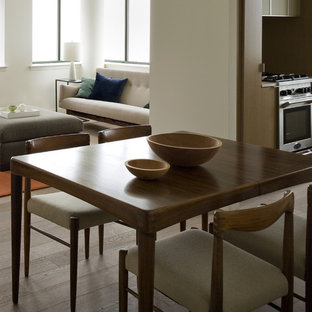 Kitchen/dining room combo - eclectic kitchen/dining room combo idea in New York