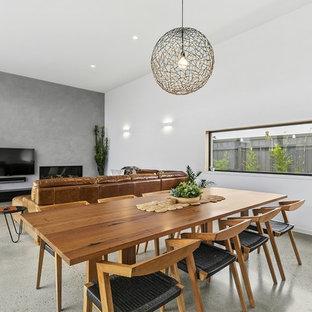 Ejemplo de comedor moderno, de tamaño medio, abierto, con paredes blancas, suelo de cemento, chimenea tradicional y marco de chimenea de hormigón