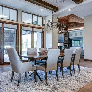Modelo de comedor de cocina actual, grande, con paredes blancas, suelo de madera en tonos medios, chimenea de esquina, marco de chimenea de piedra y suelo marrón