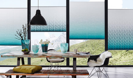 Windows of Opportunity: A Buyer's Guide to Blinds