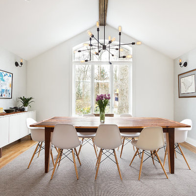 Inspiration for a contemporary medium tone wood floor dining room remodel in DC Metro with white walls and no fireplace
