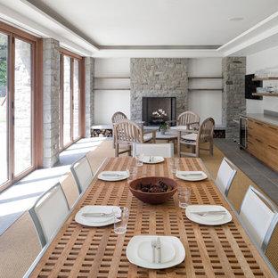 Стильный дизайн: кухня-столовая среднего размера в современном стиле с белыми стенами, полом из керамогранита, стандартным камином, фасадом камина из камня и серым полом - последний тренд