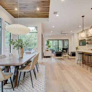 High Quality Inspiration For A Modern Dining Room Remodel In Austin