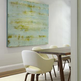 Foto de comedor contemporáneo con paredes blancas y suelo de madera en tonos medios