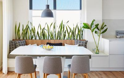 Friske alternativer: Sådan kan du også bruge planter i hjemmet