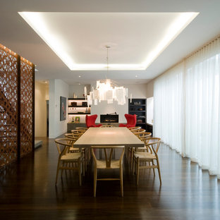 Esempio di un'ampia sala da pranzo aperta verso il soggiorno moderna con pareti bianche, parquet scuro e camino lineare Ribbon