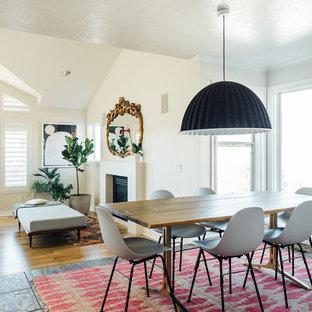 Свежая идея для дизайна: гостиная-столовая среднего размера в стиле фьюжн с белыми стенами, полом из сланца, камином, фасадом камина из штукатурки и серым полом - отличное фото интерьера