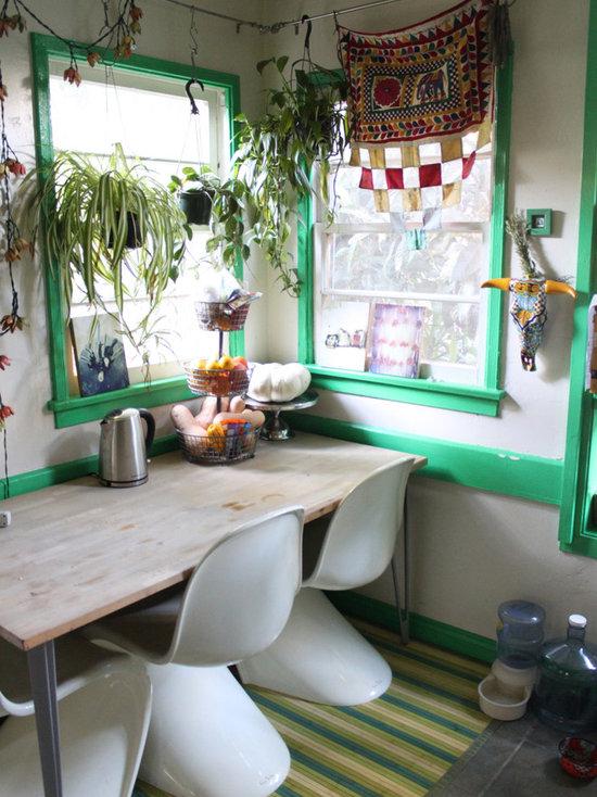 indoor hanging plants | houzz