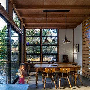 シアトルの小さい北欧スタイルのおしゃれなダイニングキッチン (コンクリートの床) の写真