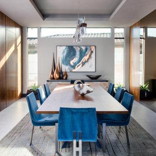 Esempio di una sala da pranzo contemporanea chiusa e di medie dimensioni con pavimento grigio, soffitto ribassato, pavimento con piastrelle in ceramica e pareti bianche