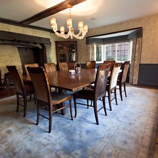 Ispirazione per una grande sala da pranzo classica chiusa con pareti blu, pavimento in terracotta, camino classico e cornice del camino in pietra