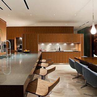 Idee per una sala da pranzo aperta verso la cucina moderna di medie dimensioni con pareti marroni, nessun camino e pavimento in vinile