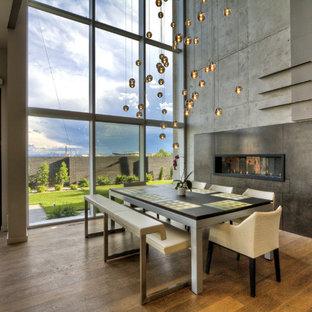 Modelo de comedor actual, de tamaño medio, abierto, con paredes grises, suelo de madera en tonos medios, chimenea lineal, marco de chimenea de metal y suelo marrón