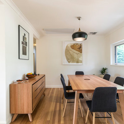 Mid-sized trendy medium tone wood floor and brown floor enclosed dining room photo in Canberra - Queanbeyan with white walls
