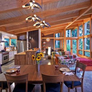 Ispirazione per una grande sala da pranzo aperta verso il soggiorno rustica con pareti marroni, pavimento in cemento, nessun camino e pavimento marrone