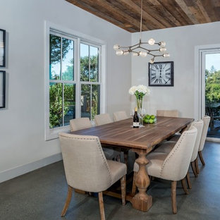 Dining room - transitional concrete floor and gray floor dining room idea in San Francisco with white walls