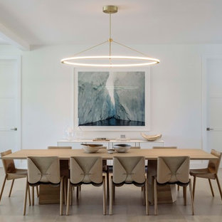 75 Contemporary Dining Room Design Ideas - Stylish Contemporary ...