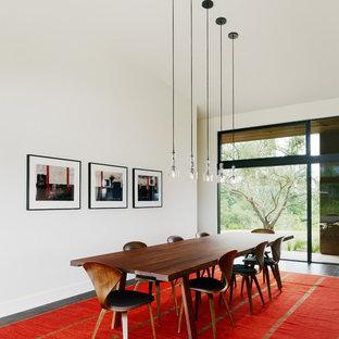 Ispirazione per una sala da pranzo minimalista con pareti bianche e parquet scuro