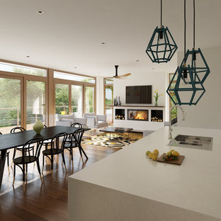 Inspiration for a mid-sized contemporary medium tone wood floor great room remodel in Melbourne with white walls