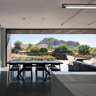 Foto di una sala da pranzo aperta verso il soggiorno moderna di medie dimensioni con pareti bianche, pavimento in cemento, camino classico e cornice del camino in metallo