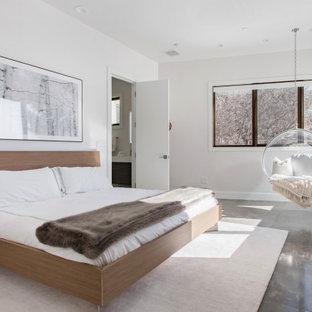 Неиссякаемый источник вдохновения для домашнего уюта: большая хозяйская спальня в стиле модернизм с белыми стенами, мраморным полом и коричневым полом