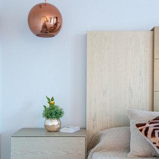 Modelo de dormitorio principal, moderno, de tamaño medio, con paredes grises