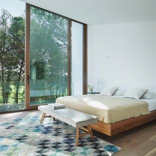 Diseño de dormitorio principal, minimalista, grande, sin chimenea, con paredes blancas y suelo de madera en tonos medios