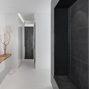 Idee per una piccola porta d'ingresso moderna con pareti bianche, una porta singola e una porta grigia