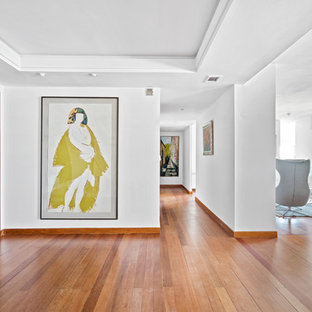 Foto de distribuidor contemporáneo, grande, con paredes blancas, suelo de madera en tonos medios, suelo marrón, puerta simple y puerta de vidrio