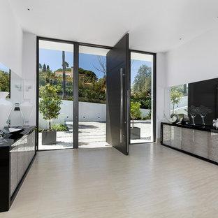 Пример оригинального дизайна: большое фойе в современном стиле с поворотной входной дверью и черной входной дверью