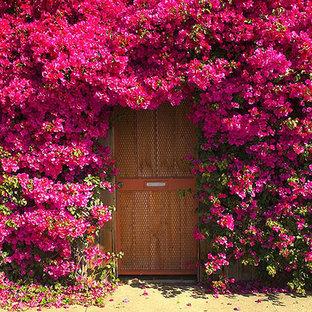 コーンウォールの片開きドアエクレクティックスタイルのおしゃれな玄関ドア (マルチカラーの壁、金属製ドア) の写真