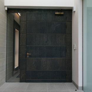 Diseño de puerta principal contemporánea con paredes blancas y puerta de madera oscura