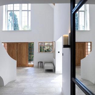 Elegant Contemporary Entrance Hallway