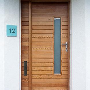 Foto di una porta d'ingresso minimal di medie dimensioni con pareti bianche, pavimento in terracotta, una porta a pivot e una porta in legno bruno