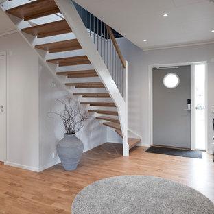 Inspiration för mellanstora moderna entréer, med en enkeldörr och en grå dörr