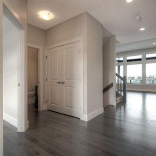 Diseño de hall moderno, de tamaño medio, con paredes grises y suelo vinílico