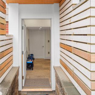 Источник вдохновения для домашнего уюта: тамбур среднего размера в стиле модернизм с серыми стенами, полом из известняка, одностворчатой входной дверью, белой входной дверью и коричневым полом