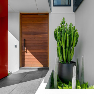 Inspiration for a large contemporary front door in Sydney with white walls, a single front door, a medium wood front door and grey floor.