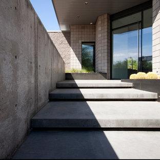 Immagine di un ingresso o corridoio minimalista con pavimento in cemento, una porta a pivot e una porta in metallo