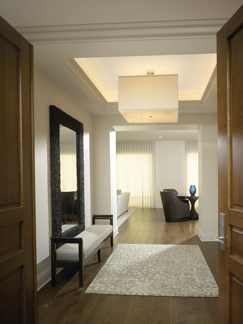Entryway Design Ideas 70 foyer decorating ideas design pictures of foyers house beautiful Example Of A Trendy Entryway Design In Chicago With A Double Front Door Houzz