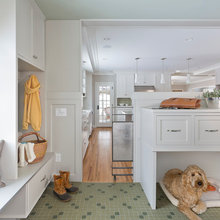 Homes for Your Hound