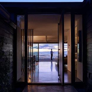 Exempel på en modern entré, med vita väggar, plywoodgolv, en pivotdörr och en svart dörr