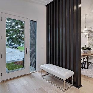Aménagement d'un hall d'entrée avec un mur blanc, une porte simple et une porte en verre.