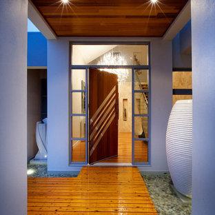 Esempio di una porta d'ingresso minimal con una porta a pivot e una porta in legno scuro