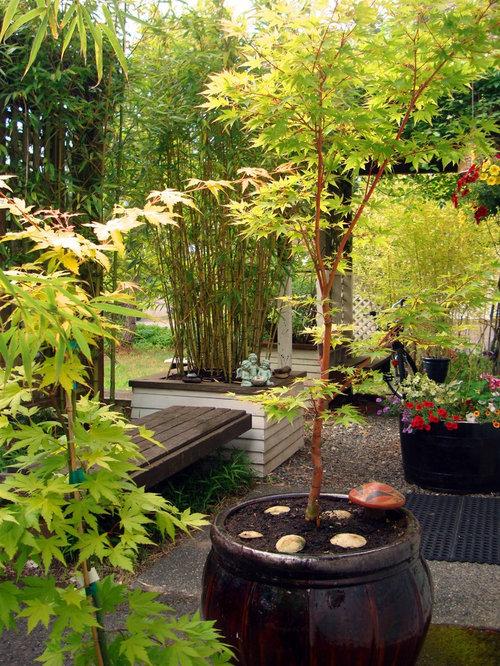 Asian patio furniture patio furniture entryway design for Garden renovation ideas